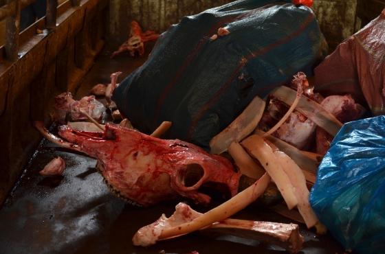 House of Haos Xishuangbanna Yunnan farmers market skull and bones