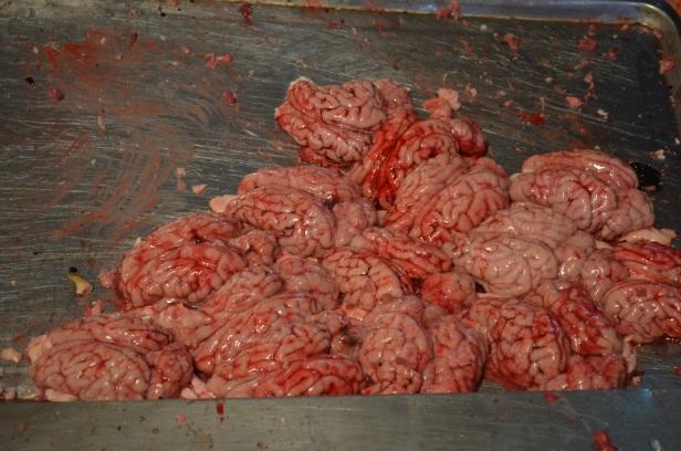 House of Haos Xishuangbanna Yunnan farmers market pig brains