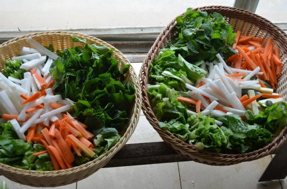 House of Haos Kunming Yunnan Haobao Organic Farm Vegetables
