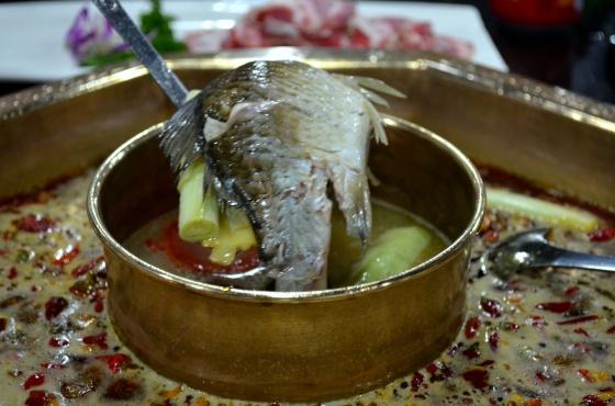 House of Haos Shu Jiu Xiang Hotpot Chengdu Sichuan China Fish