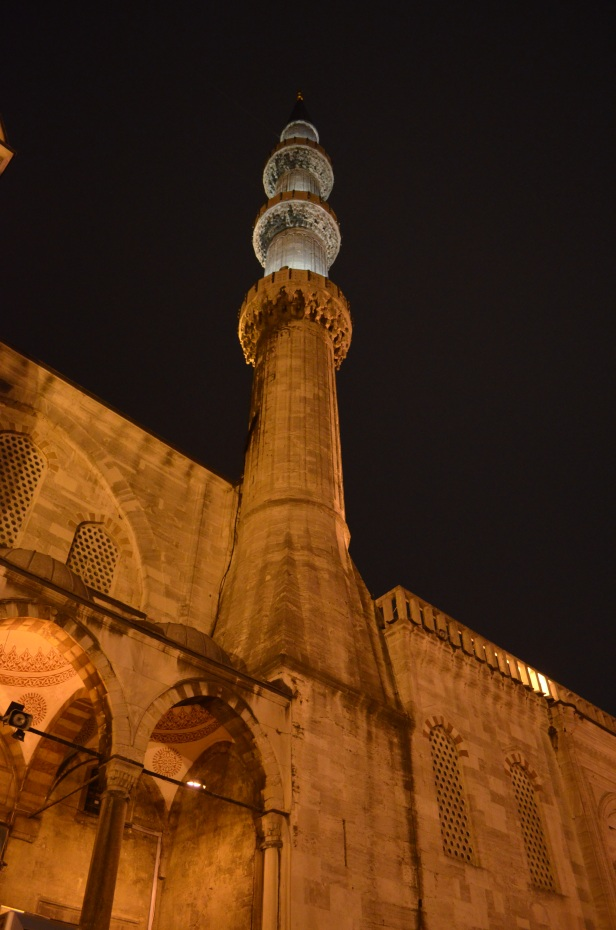 House of Haos Istanbul Turkey Blue Mosque 2