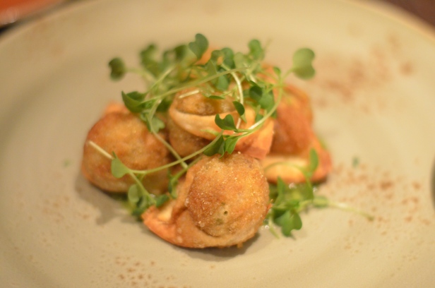 House of Haos The Cecil Harlem NYC Fried Dumplings