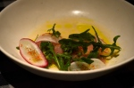 House of Haos Upland NYC Hamachi Crudo